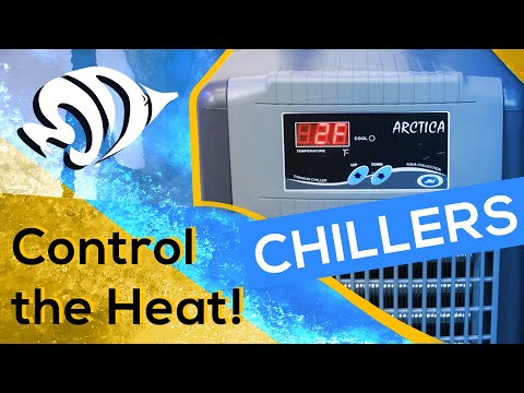 Aquarium Chillers: How To Keep Cool In The Summer!