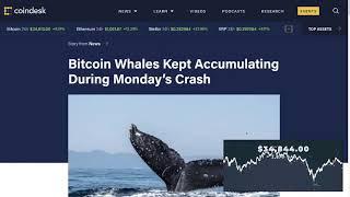 German Police Shutdown Dark Market - Whales Accumulating… -- $34,917.00 / $1 = 2,864 SAT