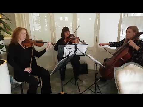 Wedding String Trio Scotland