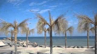 видео Кирилівка бази відпочинку