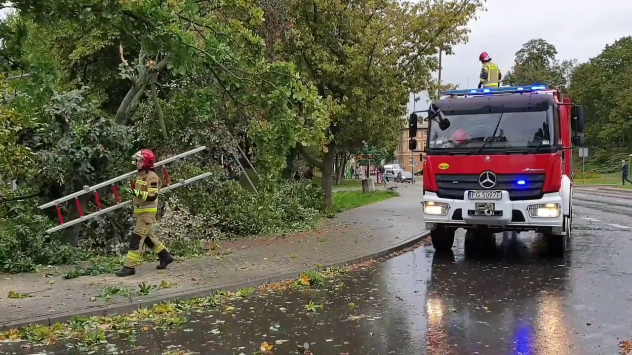 Wiatr wieje jak szalony. Strażacy ciągle usuwają skutki wichury w Lubuskiem