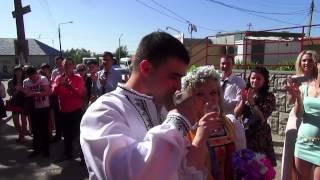 В Воронеже прошла свадьба в украинском стиле