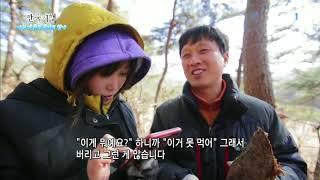 한국기행 - Korea travel_나는 겨울로 살기로 했다 4부 비밀의 숲_#001