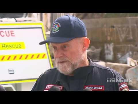 Paw Patrol | 9 News Perth