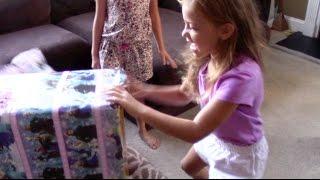 Breyer Horses and Barn Birthday Surprise