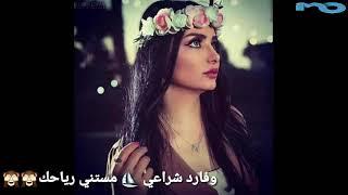 مهرجان جمالك حبيبتي جمال مستفز حالة واتس حب