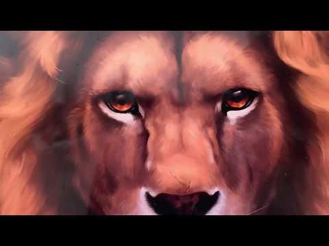 ПЕРВОЕ ФОТО с львом ЛОРДОМ ! Друзья , нам нужна ВАША ПОМОЩЬ !!!