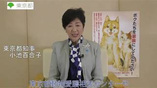 動物の譲渡促進月間に関する知事ビデオメッセージ