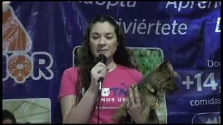 +KOTA: Función pet friendly