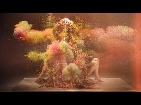 Björk & Andrew Thomas Huang - Una Experiencia Interior