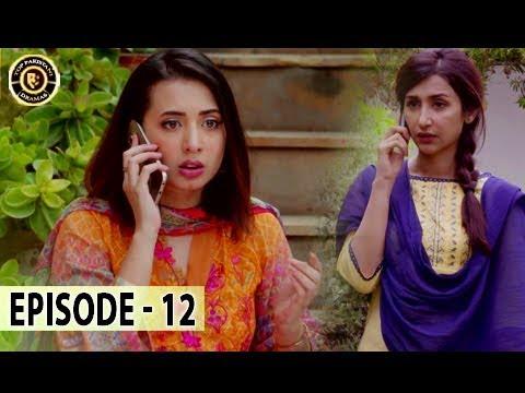 Zard Zamano Ka Sawera Ep 12 - Top Pakistani Drama