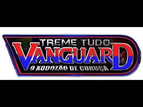 cd-ao-vivo-da-live-do-treme-tudo-vanguard-(pequeno-mestre-dj-fabinho-maestro-dj-valdo-alves-)