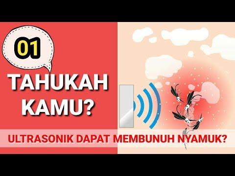 Gelombang ultrasonik dapat membunuh nyamuk??-Tahukah Kamu?#1
