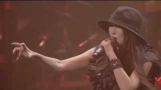 森岡賢 参加ライブ