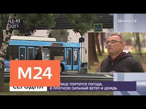 В ближайшие часы погода в столице испортится - Москва 24