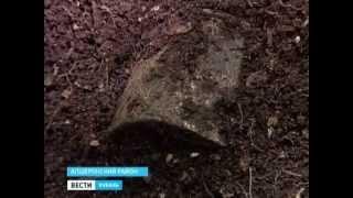 Память жертв Великой Отечественной войны почтили минутой молчания