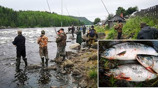 УДАЧНАЯ  РЫБАЛКА НА ГОРБУШУ 2019  /SUCCESSFUL FISHING FOR SALMON 2019