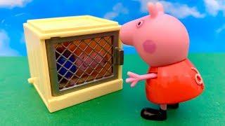 Świnka Peppa i Teletubisie po Polsku  George potrzebuje POMOCY !!