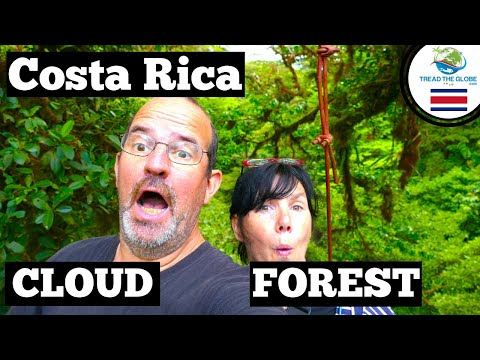 Monteverde Cloud Forest Costa Rica (2019)  | Must See Costa Rica