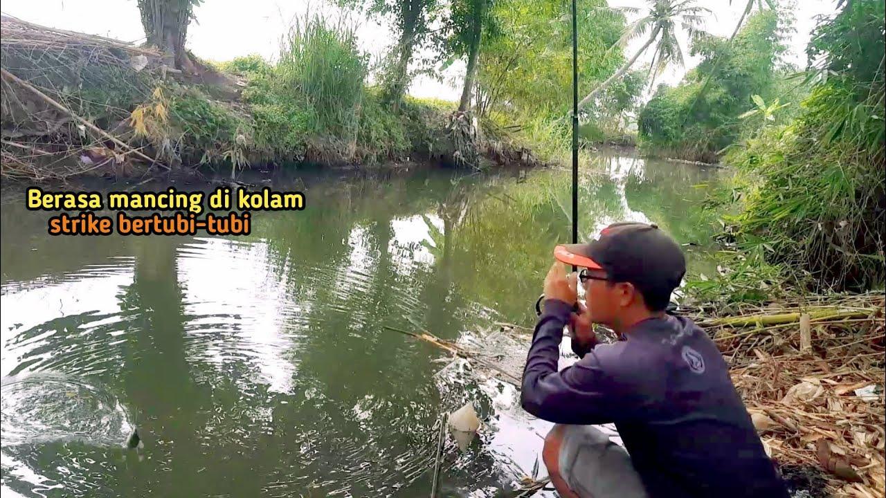 mancing pas di sarang ikan ... hasil nya auto panen