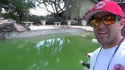How To Clear Up A Green Pool Fast