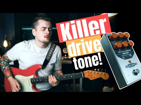 RevivalDRIVE Compact - the Ultimate Amp-In-A-Box Pedal from Origin Effects