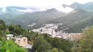 En Mi Pueblo Comerio P.R. Montaña En Flor