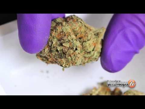 Cannabinoid Profile - CBG Cannabigerol