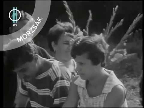 Földbirtokos gimnazisták - Sárvári riportműsor (1967) letöltés