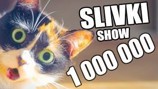 1 000 000 ПОДПИСЧИКОВ! [SLIVKI SHOW](, 2015-07-31T18:59:02.000Z)