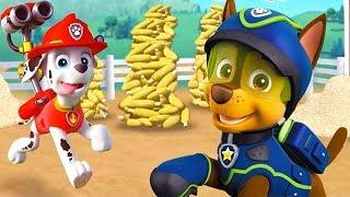 Щенячий патруль Кукурузная Катастрофа, мульт игра #2