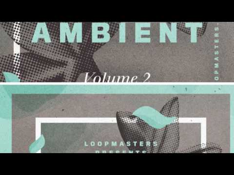 Zen Ambient Vol 2 - Hang Drum Chillout Samples & Loops - By Loopmasters