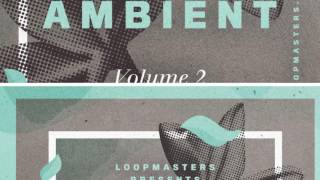 Zen Ambient Vol 2 - Hang Drum Chillout Samples Loops - By Loopmasters