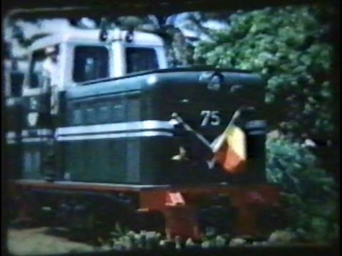 Memories from Buta - Belgian Congo in the 1950s