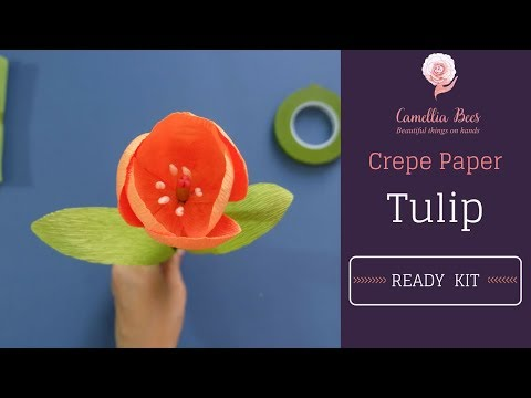 How to make paper Tulip from Paper Tulip kit - crepe paper flower