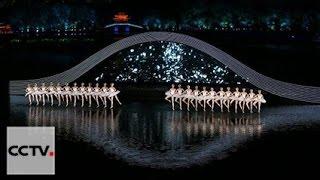 Лебединое озеро(G20)