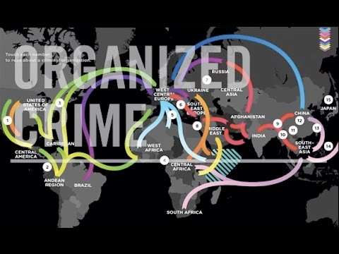 Transnational Organized Crime Interns: Crimeophobia
