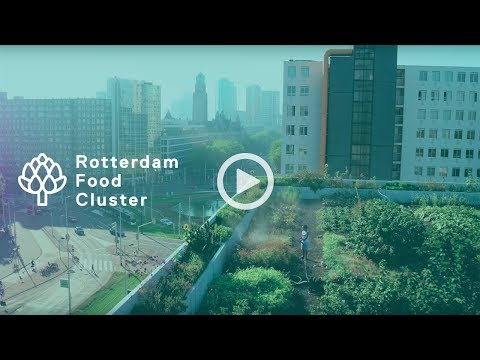 Rotterdam Food Cluster - Creating Tomorrow's Business