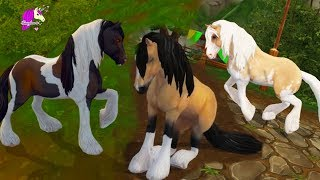 All 6 Tinkers Buying New Tinker Horses Star Stable Online Video Game