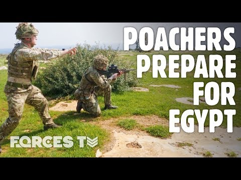 How The Army Prepares For The Egyptian Desert | Forces TV