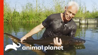 Jeremy Wade is in Search of the Lake Garda Monster | Jeremy Wade's Dark Waters