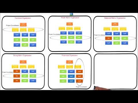 Organization Structure Influence Project Management