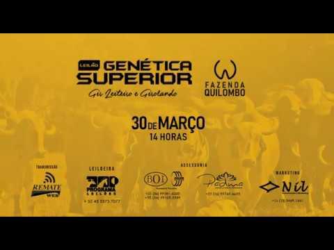 Chamada Leilão Genética Superior_Faz  Quilombo_30.03.19_14h