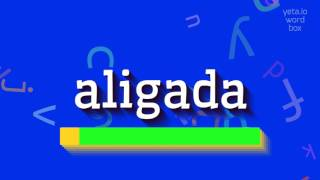 "How to say ""aligada""! (High Quality Voices)"
