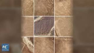 Drones help to identify new Nazca Lines in Peru