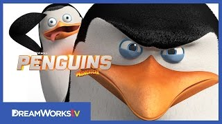 How To Be A Spy With Skipper And Private | NEW PENGUINS OF MADAGASCAR