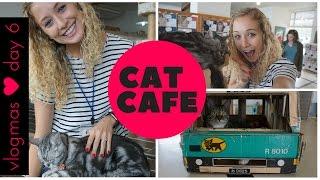 Video JAPANESE CAT CAFE! - vlogmas day 6 download MP3, 3GP, MP4, WEBM, AVI, FLV September 2018