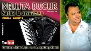 NELUTA BUCUR . Sarba la acordeon (oficial audio)