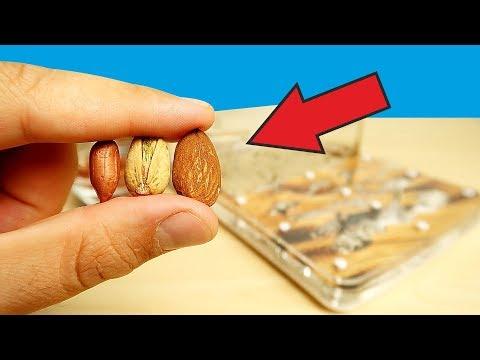 Что если дать муравьям огромные орешки и семечки? Муравьиная ферма. alex boyko