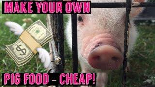 Mini Pig / Pot Belly Pig make your food - Save Money! DIY Potbellied pig